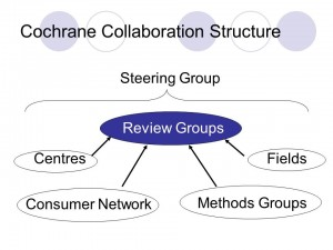 scheme 2005